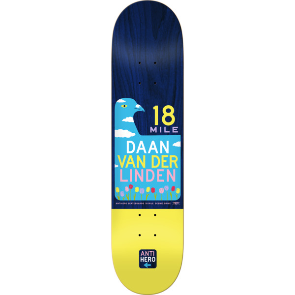 e9f9e7c7044 Anti Hero Skateboards Daan Van Der Linden Scenic Drive II Skateboard Deck -  8.06 x 31.8 - Warehouse Skateboards