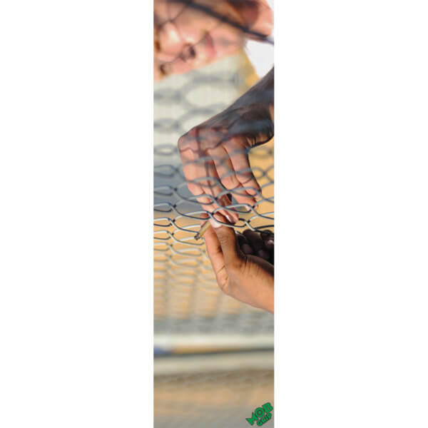 "Mob Grip Rhino Skate Kremer Griptape - 9"" x 33"""