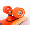 Dusters California Skateboards Bird Flutter Complete