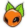 "OJ Wheels 3"" X 3.875"" Orange Skate Sticker"